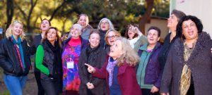 Abiding in the State of Curiosity: A Journey for Women in Transition - One Day @ Miss Daisys Magical Wonderland | Sebastopol | California | United States